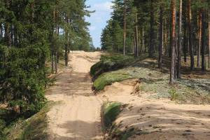 npl-overland-offroad-scout-our-lettland-sand-track-2018