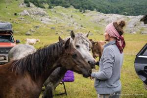 npl-overland-offroad-tour-abenteuer-montenegro-2018 (103)