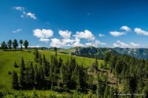 npl-overland-offroad-tour-abenteuer-montenegro-2018 (167)