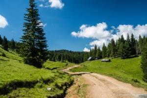 npl-overland-offroad-tour-abenteuer-montenegro-2018 (168)