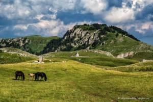 npl-overland-offroad-tour-abenteuer-montenegro-2018 (19)