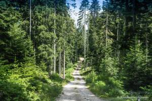 npl-overland-offroad-tour-abenteuer-montenegro-2018 (236)