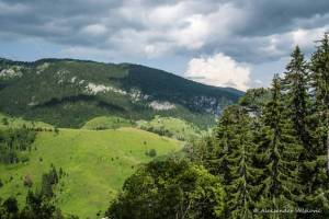 npl-overland-offroad-tour-abenteuer-montenegro-2018 (240)