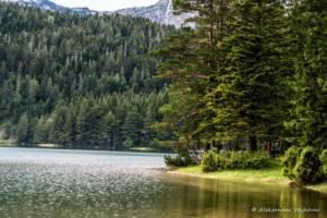 npl-overland-offroad-tour-abenteuer-montenegro-2018 (254)