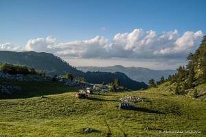 npl-overland-offroad-tour-abenteuer-montenegro-2018 (27)