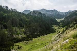 npl-overland-offroad-tour-abenteuer-montenegro-2018 (74)