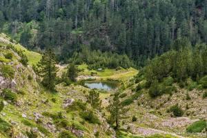 npl-overland-offroad-tour-abenteuer-montenegro-2018 (76)